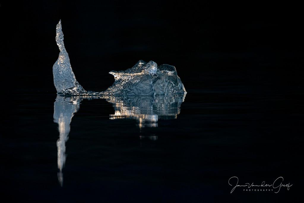 9 Ice fish-1